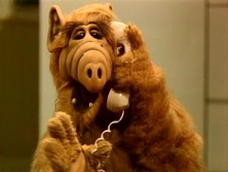 ALF: Somethings make you scratch your head.